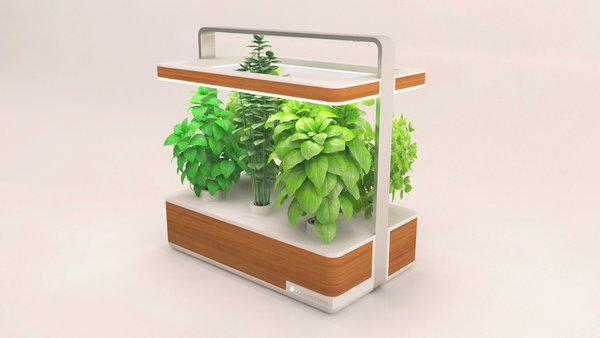 Innovation un jardin aromatique d int rieur intelligent et connect geoffraysylvain - Jardin aromatique d interieur ...