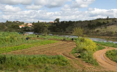 normandie ils concilient bio et rendement gr ce la permaculture groupecarrefour On permaculture normandie